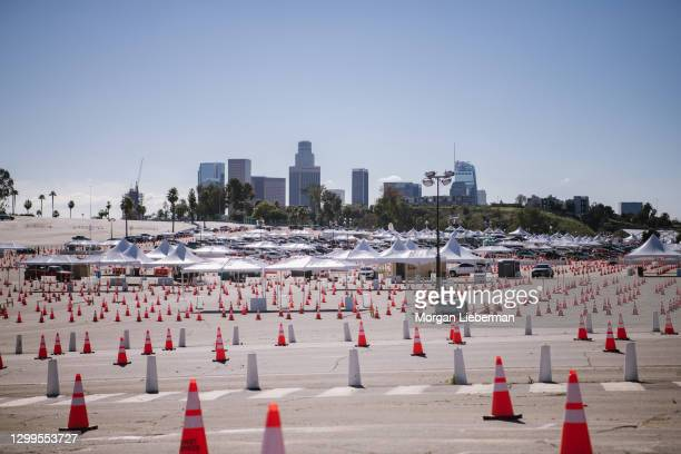 Cars are lined up for COVID-19 vaccinations at Dodger Stadium on January 30, 2021 in Los Angeles, California. The vaccination site at Dodger Stadium...