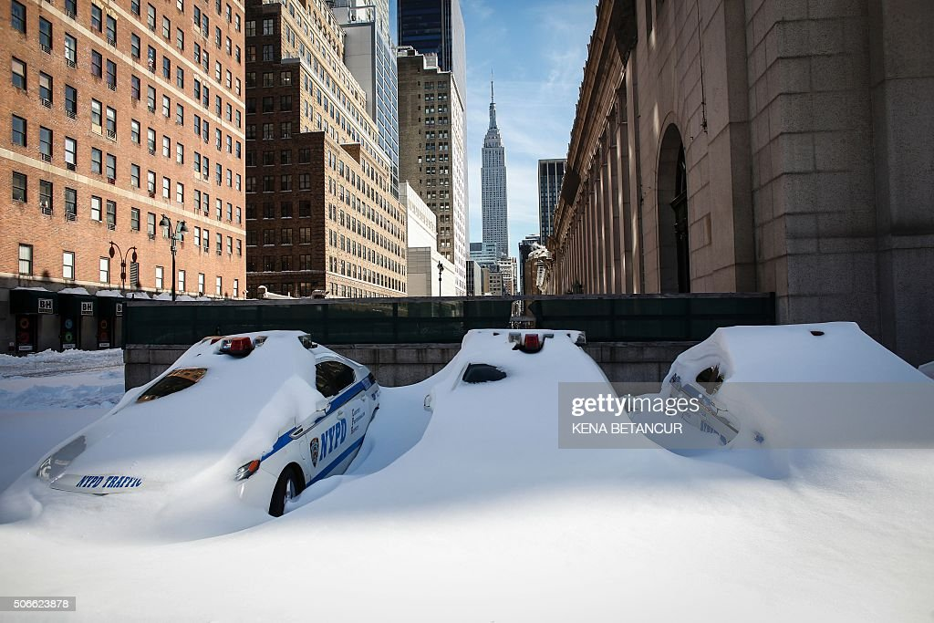 TOPSHOT - NYPD cars covered in snow are seen in New York on January 24, 2016. Millions of people in the eastern United States started digging out Sunday from a huge blizzard that brought New York and Washington to a standstill, but the travel woes were far from over. The storm -- dubbed 'Snowzilla' -- killed at least 18 people after it walloped several states over 36 hours on Friday and Saturday, affecting an estimated 85 million residents who were told to stay off the roads and hunker down in doors for their own safety. / AFP / KENA