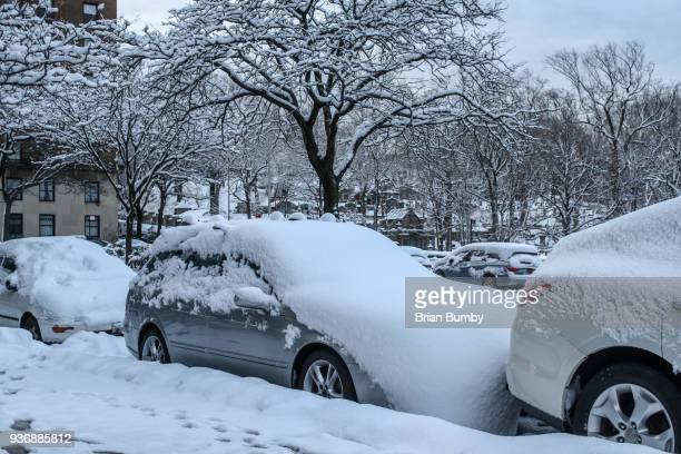 Cars covered in snow on street