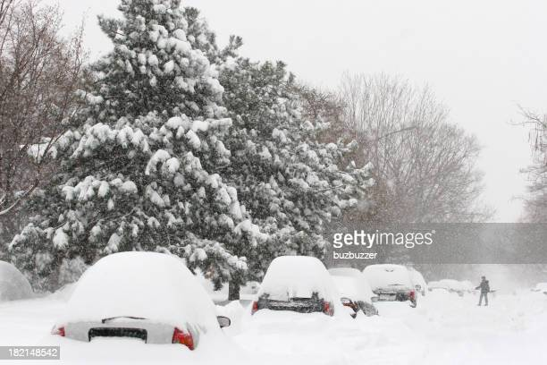 Cars covered with Snow in a Montreal City Street
