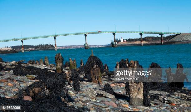 Cars cross the International Bridge between Lubec Maine and Campobello Island Canada March 3 2017 in the US/Canada border town of Lubec Maine Lubec...