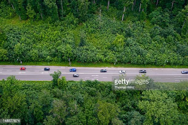 Cars driving through woods from TV Tower.