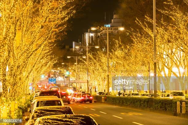 cars go through among the illuminated tree lined omotesadndo street for winter holydays season in the night at kitaaoyama, minato tokyo japan on december 06 2017. - アベニュー ストックフォトと画像