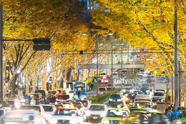 cars go through among the rows of illuminated autumn leaves trees at omotesando street for winter holydays season in the dusk at jingumae, shibuya tokyo japan on december 06 2017. - 表参道 ストックフォトと画像
