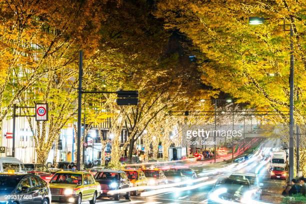 cars go through among the rows of illuminated autumn leaves trees at omotesando street for winter holydays season in the night at jingumae, shibuya tokyo japan on december 05 2017. - 表参道 ストックフォトと画像