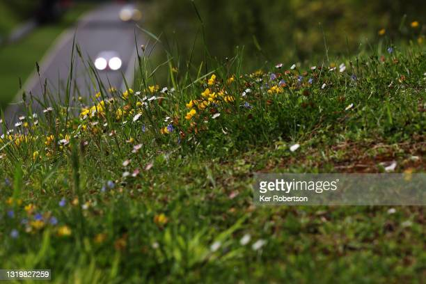 Cars head down Hawthorn Hill during the British GT Championship at Brands Hatch on May 23, 2021 in Longfield, England.