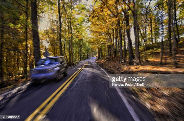 cars on country road amidst trees in forest - fedor stock pictures, royalty-free photos & images