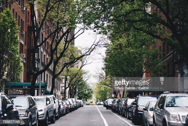 Cars On Road Amidst Trees In City