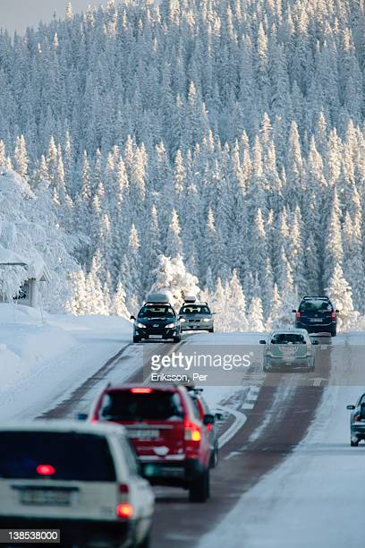 Cars on snow covered road near forest