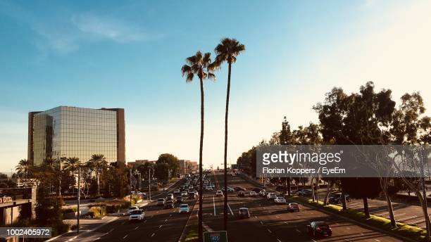 cars on street by palm trees against sky - costa mesa stock photos and pictures
