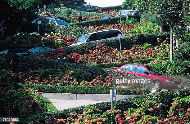 cars on winding roads with gardens - lombard street san francisco stock pictures, royalty-free photos & images