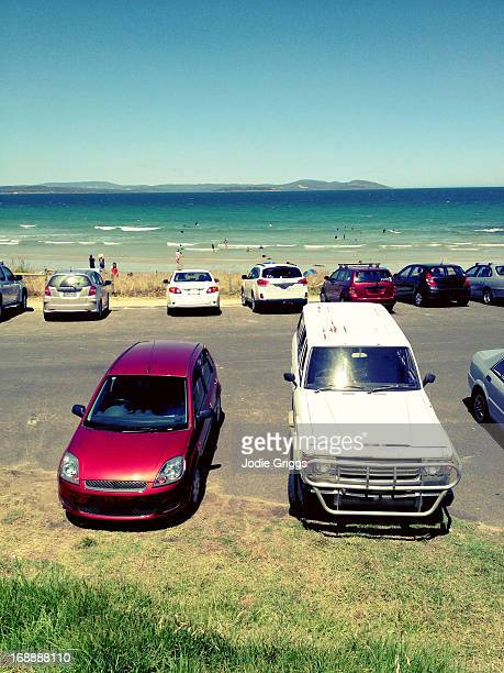 Cars parked at the beach with ocean in background