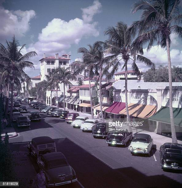 Cars parked on a treelined street in Palm Beach Florida circa 1953
