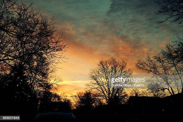 cars parked on road at sunset - corinne paradis photos et images de collection