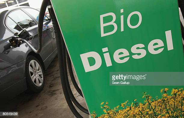 A car's tank gets filled with gasoline at a gas station that also sells biofuels on April 7 2008 in Berlin Germany The German government recently...