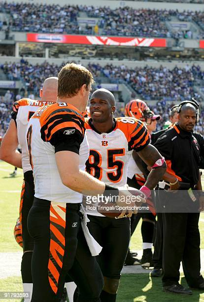 Carson Palmer and Chad Ochocinco of the Cincinnati Bengals look on from the bench against the Baltimore Ravens at M&T Bank Stadium on October 11,...