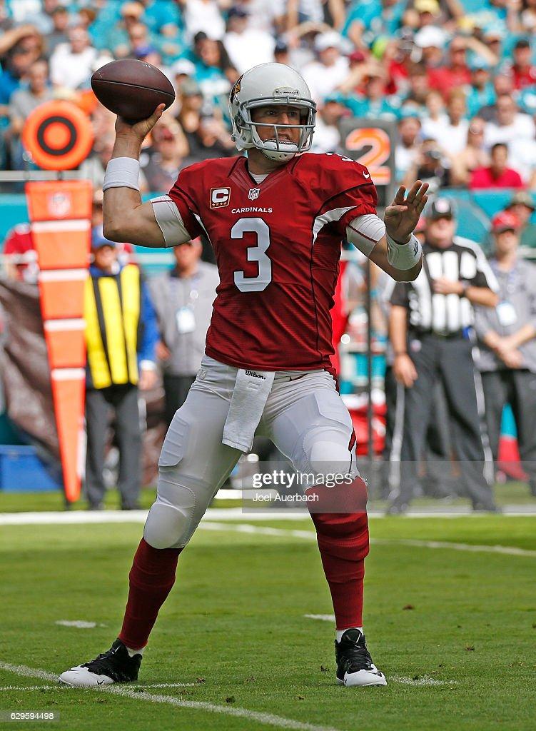 Arizona Cardinals v Miami Dolphins : Nyhetsfoto
