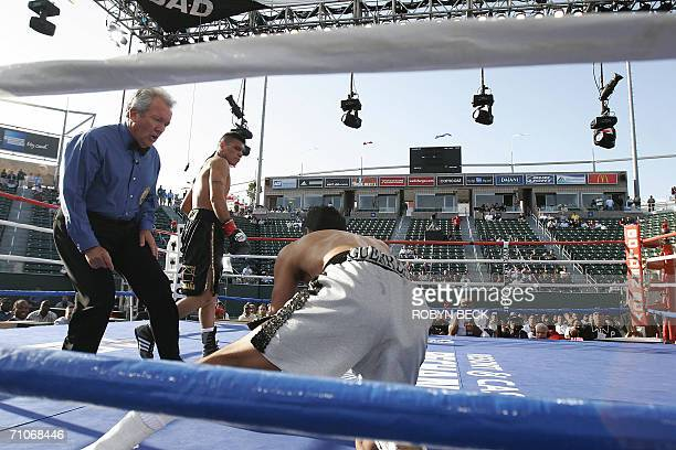 Mexico's Daniel Ponce De Leon walks away after knocking down Mexico's Gerson Guerrero in the first round of their Jr Featherweight WBO World...
