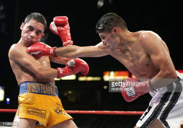 Mexico's Jhonny Gonzalez delivers a head punch to contender and compatriot Fernando Montiel in round eight of their 12 round Bantamweight WBO World...