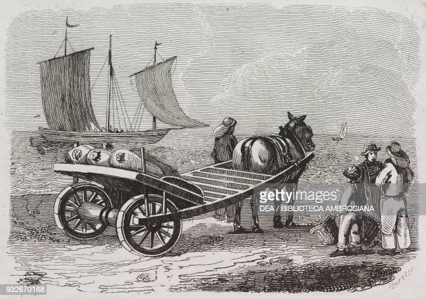 Cart for transporting herring in Yarmouth, Isle of Wight, United Kingdom, engraving from L'album, giornale letterario e di belle arti, March 31 Year...