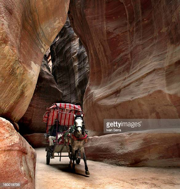 CONTENT] A cart pulled by a horse is going through the Siq in Petra It is about to arrive to the Treasure in the Lost City of Petra