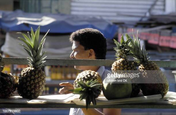 FRUIT VENDOR COLUMBIA Cartagena Man selling pineapples More pictures on this subject available on request CDREF00080