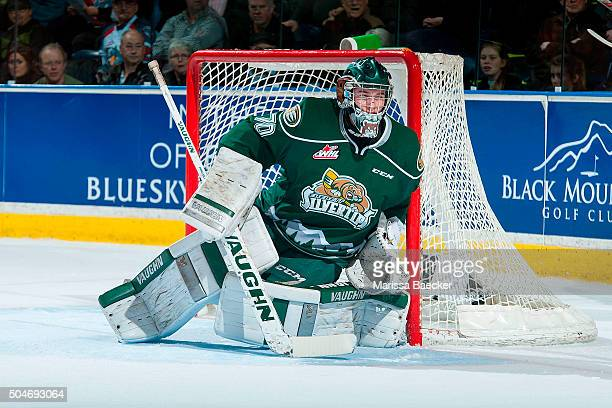 Carter Hart of Everett Silvertips defends the net against the Kelowna Rockets on January 8 2016 at Prospera Place in Kelowna British Columbia Canada