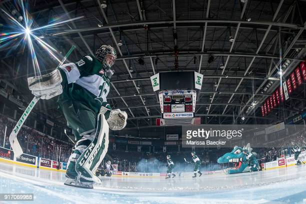 Carter Hart of the Everett Silvertips scrapes the ice in the crease against the Kelowna Rockets at Prospera Place on February 2 2018 in Kelowna Canada