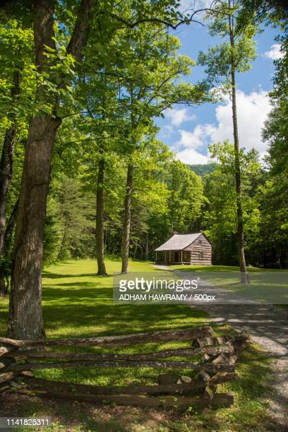 carter shields cabin, cades cove - cades cove stock pictures, royalty-free photos & images