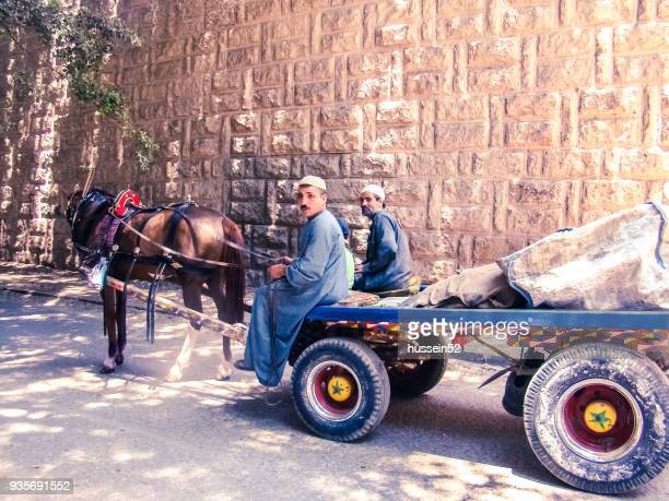 cart-horse - hussein52 stock photos and pictures