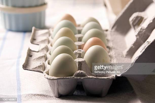 Carton of multi colored farm fresh eggs NY, USA