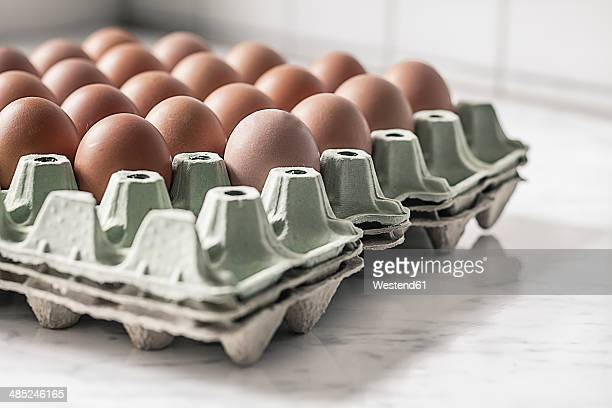 Carton palette with brown eggs