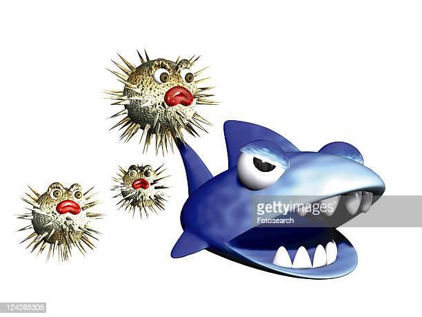 cartoon, animal, shark, cute, 3D