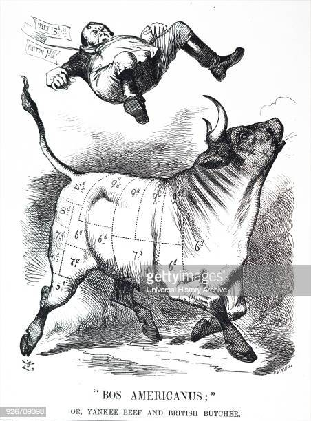 Cartoon commenting on the sale of beef Illustrated by John Tenniel an English illustrator graphic humourist and political cartoonist Dated 19th...