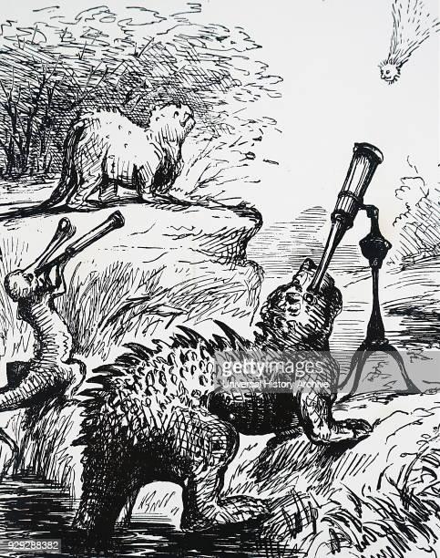 Cartoon depicting animals watch The Great Comet of 1861 discovered by John Tebbutt John Tebbutt an Australian astronomer Dated 19th Century