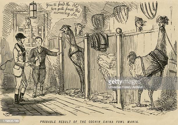 Cartoon from ''Punch'' London poking fun at the mania for the new large CochinChina poultry