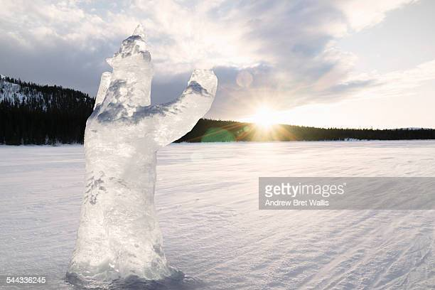 Carved ice bear melts in strong morning sunlight