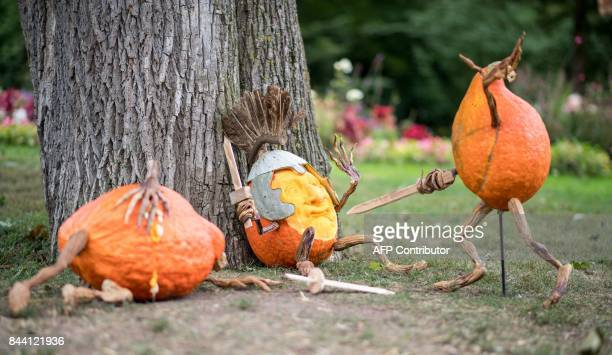 Carved pumpkins designed by US pumpkin artist Ray Villafane are pictured during a pumpkin exhibition in Ludwigsburg southern Germany on September 8...