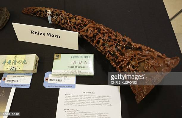 A carved rhino horn is among the confiscated wildlife contraband placed on display during the seventh USChina Strategic and Economic Dialogue at the...