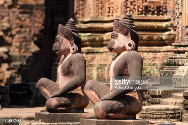 carved stone monkey gods at banteay srei temple, cambodia - kambodschanische kultur stock-fotos und bilder