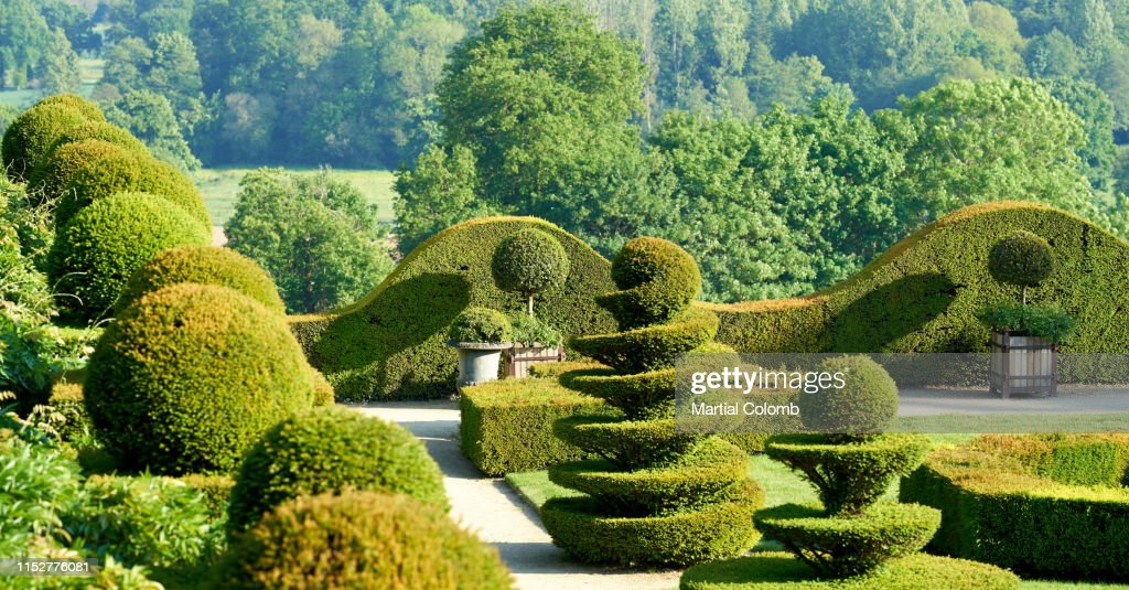 Carved Trees In A Topiary Garden La Ballue High Res Stock Photo