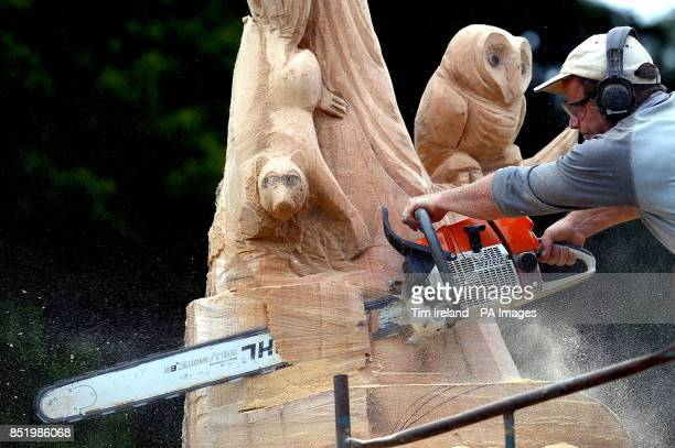 Carver Raymond Wirick works on his Little Bo Peep storytelling chair sculpture from a tree on day two of Treefest at Westonbirty Arboretum in...