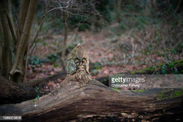 A carving adorns a fallen tree at Moseley Bog believed to be the inspiration for Tolkien's ancient forests in his books The Lord of the Rings and The...