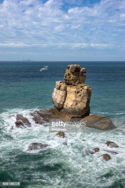 carvoeiro cape, peniche, portugal - lifeispixels stock pictures, royalty-free photos & images