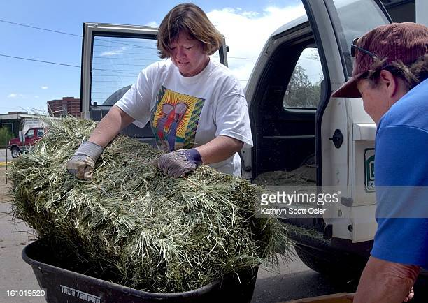 Caryn Boddie left from south Jefferson County unloads hay from her truck at the Jefferson County Fairgrounds after she heard that relocated horses...
