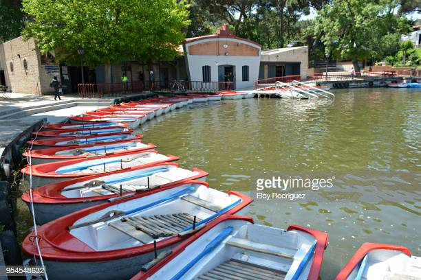 casa de campo, madrid - campo stock pictures, royalty-free photos & images