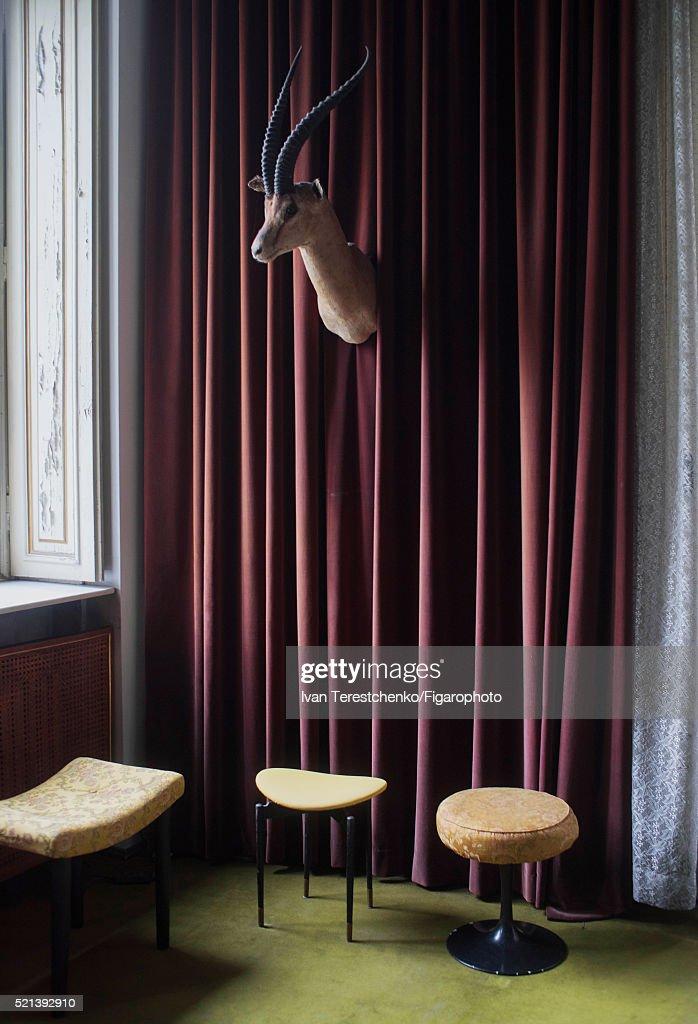 Outstanding Casa Mollino Is Photographed For Madame Figaro On May 21 Frankydiablos Diy Chair Ideas Frankydiabloscom