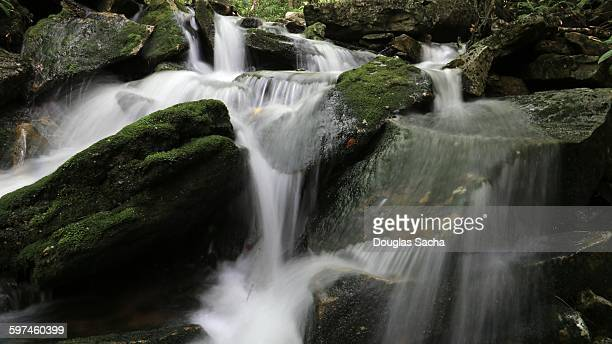 cascade of falling water - monongahela national forest stock photos and pictures