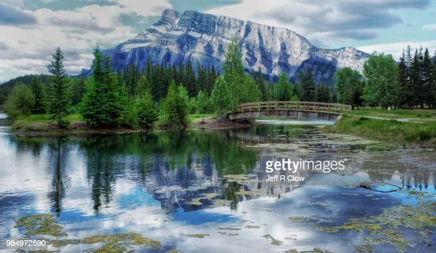 cascade ponds in alberta - freshwater stock pictures, royalty-free photos & images