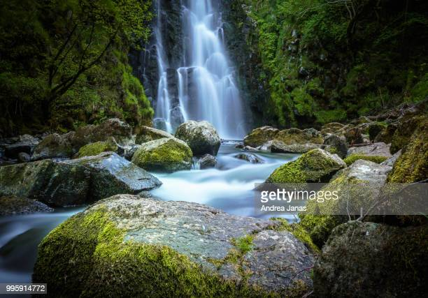 cascade sartre - moss stock pictures, royalty-free photos & images